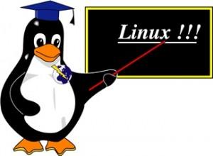 Curso de Shell Script: Módulo #0 - Comandos Básicos do Linux